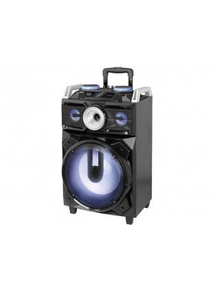 Altoparlante Casse con Microfono 120W Sistema Bass Reflex a 2 vie Radio FM PLL