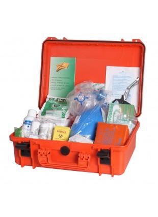 Valigetta Cassetta Medica Pronto Soccorso Tabella D Allegato 2