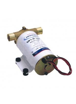 Elettropompa idraiulica travaso acqua Marco 24 V 35 l/min