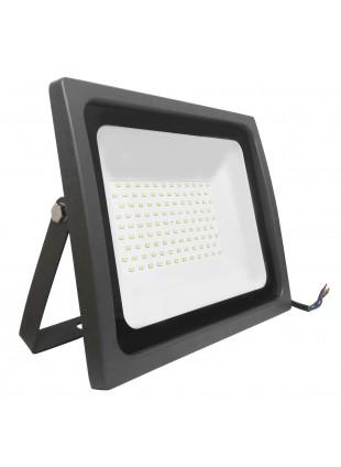 Faretto Faro Illuminazione Esterno 100W Luce Naturale Life 39.9FA010N