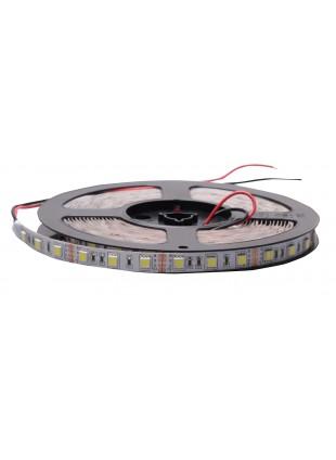 Striscia 300 Led Luminosi SMD Decorativa 7000 Kelvin Luce Bianca Fredda 5 Metri